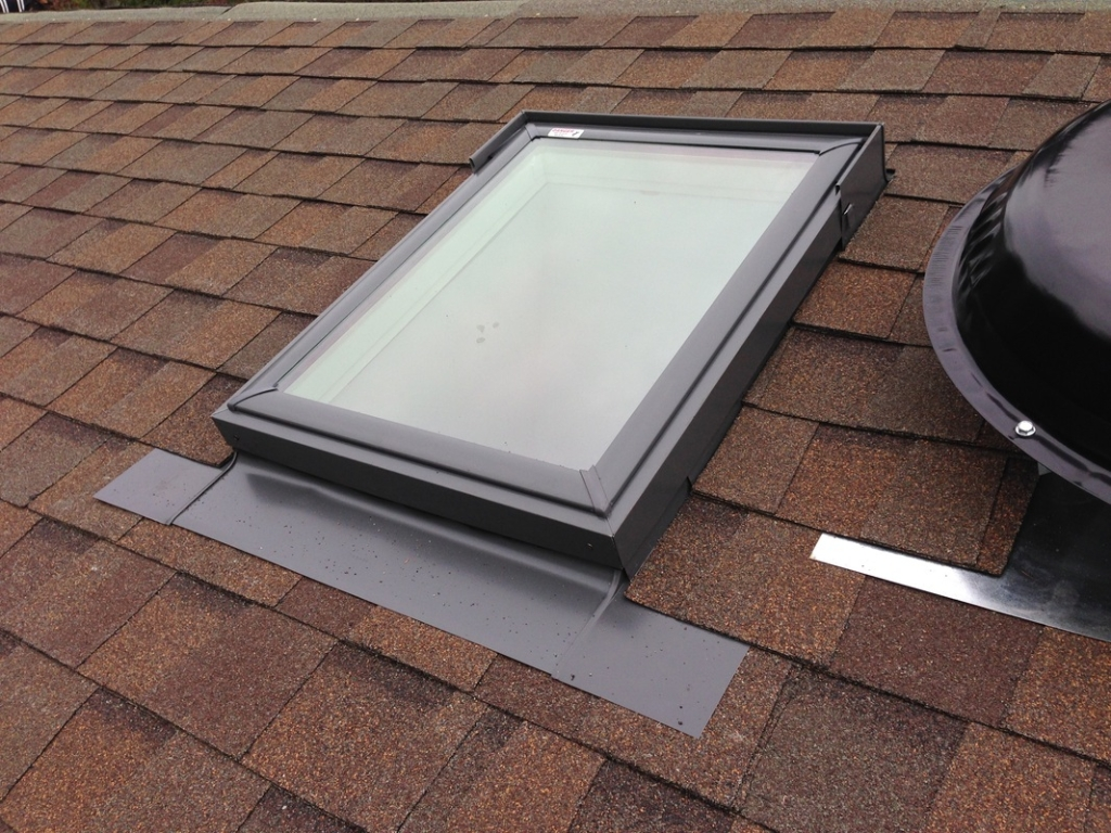 skylight repair special